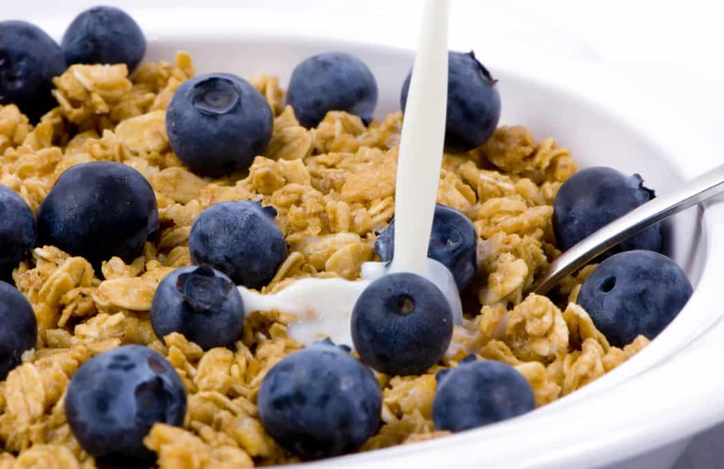 Granola Blueberry Snack